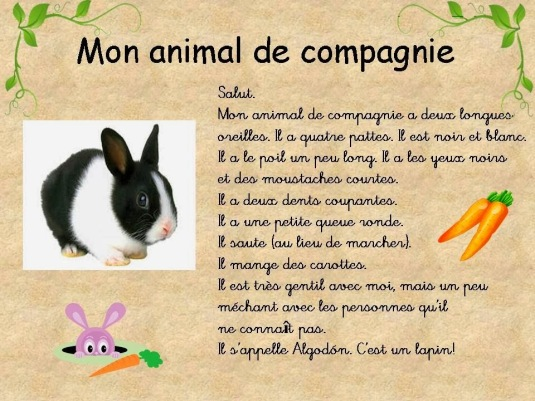 Description d'animaux 2