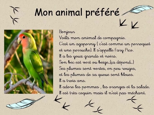 Description d'animaux 3